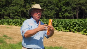 Bruce Fortnum, a plant pathologist and retired professor at Pee Dee REC, described the history of Clemson's efforts to understand and manage bacterial wilt.
