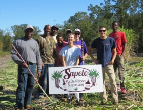 A diverse team of scientists, farmers and Sapelo islanders poses after a hard day's work chopping cane in Townsend, Ga.