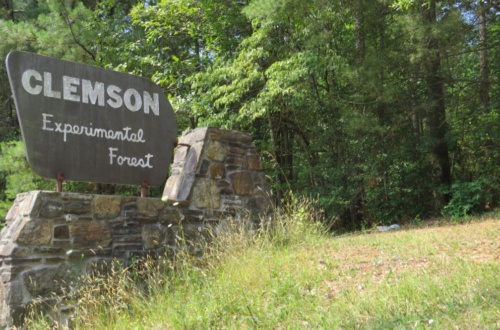 Forest Fest 2018 will be held at the Clemson Experimental Forest on Saturday, April 7.