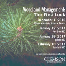 """The opening workshop, titled """"Woodland Management: The First Look,"""" will be held at four different locations across South Carolina."""