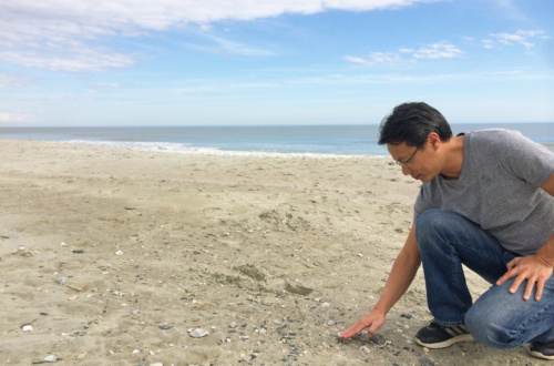 While taking sand samples at more than a dozen beaches in the Southeast, Clemson scientist Alex Chow discovered the presence of sizable amounts of natural fibers.