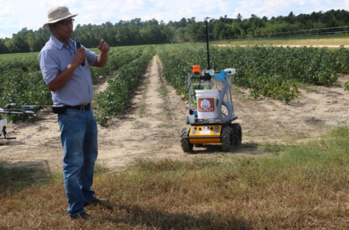Joe Mari Maja, a researcher at Clemson's Edisto Research and Education Center, believes Unmanned Ground Vehicles (UGVs) can be used to make cotton harvest more efficient.